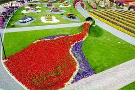 immagini di giardini fioriti giochi di colori nel giardino fiorito di dubai 礙 il miracle