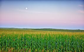 Iowa how long does it take to travel to the moon images Is this heaven no it 39 s iowa that line always makes me smile jpg