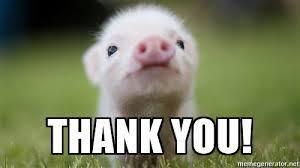 Meme Thank You - thank you piggy meme