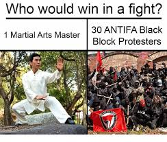 Martial Arts Memes - who would win in a fight 30 antifa black 1 martial arts master