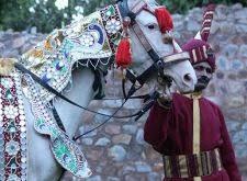 wedding bands in delhi top 20 wedding bands in delhi gurgaon noida faridabad
