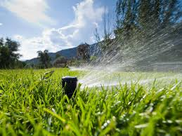 maximum home value landscaping projects irrigation and water