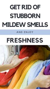 the 25 best mildew clothes ideas on pinterest removing mildew