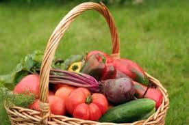 what are good vegetables to plant in late summer lovetoknow