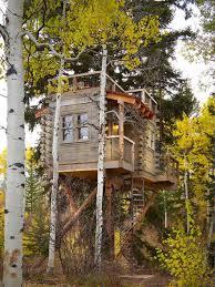 Tree House Home Tree House Home Design Home Design