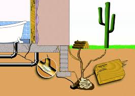how to treat for termites essential pest management