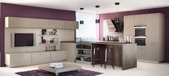 cuisine taupe cuisine beige laqu photos de design d int rieur et d coration avec