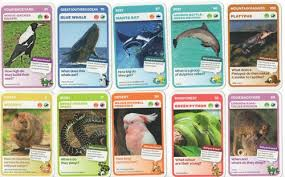 gr 2 science animal trading cards project a patchwork of