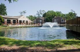 apartments for rent in the woodlands texas trailpoints at the trailpoint at the woodlands homepagegallery 4
