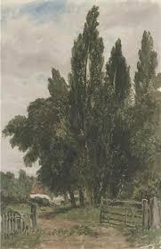 sketch of trees by a farm lane by george sheffield on artnet