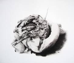 drawing in dark snails for all