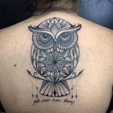 owl tattoo simple owl tattoo tatuagem tattooart tattoodo tattoaria oficial
