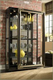 Wall Curio Cabinet Glass Doors Built In Wall Curio Cabinets Functionalities Net