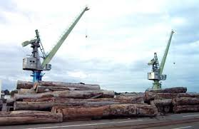 bureau veritas cameroun deliveries to the wood terminal in the douala port increased by