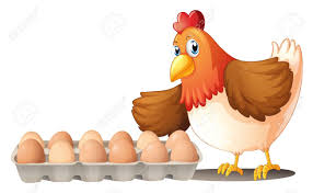 illustration of the dozen of eggs in a tray and the hen on a