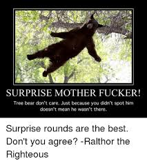 Surprise Mother Meme - surprise mother fucker tree bear don t care just because you didn t