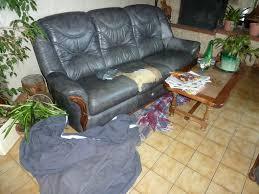 housse canapé en cuir le canapé en cuir le retour neeko le terrible