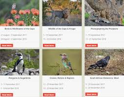 stories to inspire wildlife as an everyday challenge