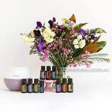 home essentials doterra home essentials kit with 10 full size essential oils