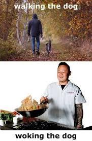 Dog Cooking Meme - woking the dog meme xyz