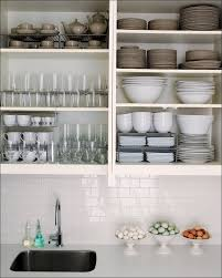 Under Cabinet Kitchen Storage by Base Cabinet Storage Organizers Full Size Of Cabinet Drawer