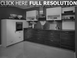 fantastic interior design of narrow kitchen ideas with white
