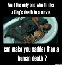 Memes About Death - am l the only one who thinks a dog s death in a movie can make you
