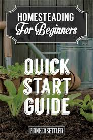 Gardening For Beginners Vegetables by 547 Best Vegetable Gardening Ideas Images On Pinterest