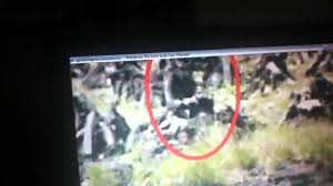 proof that dirty little leprechauns exist youtube