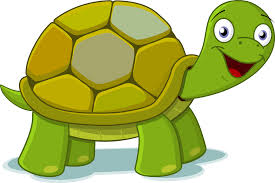 baby turtle clipart free images clipartbarn