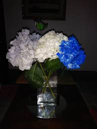 i found these dallas cowboy flowers at albertsons they wer in