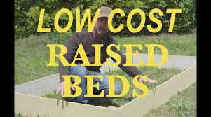 What Type Of Wood Is Best For Raised Garden Beds Seriously Cheap Raised Beds Youtube
