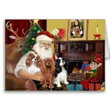 15 best cavalier king charles spaniel cards images on