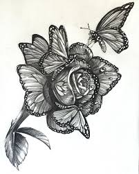 collection of 25 flowers n butterfly insect design
