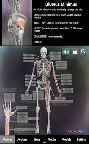 3d Knee Anatomy Muscle And Bone Anatomy 3d Android Apps On Google Play