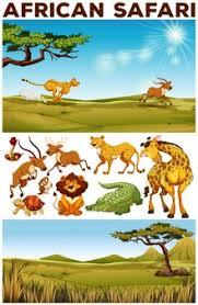 safari cartoon safari vectors photos and psd files free download