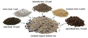 a better garden fertilizer organic gardening mother earth news