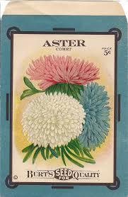 vintage seed packets free printable seed packets free printable antique aster seed