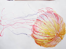 exceptional pencil coloring pages 10 ocean life drawings 3469