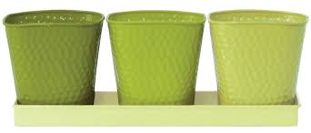 amazon com robert allen home and garden selby herb garden set