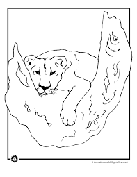 printable 25 lioness coloring pages 7541 lioness coloring