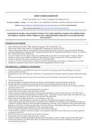 Lifeguard Job Duties For Resume by Head Lifeguard Job Description Resume Ecordura Com