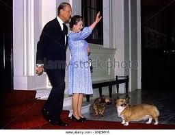 queen elizabeth dog corgi dog queen stock photos corgi dog queen stock images alamy