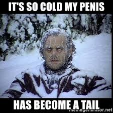 It S So Cold Meme - it s so cold my penis has become a tail frozen man meme generator
