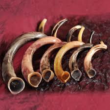 shofars for sale kudu shofars