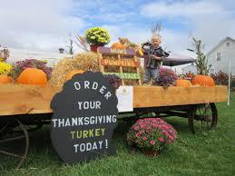 Fall Hay Decorations - seasonal decorations u0026 hay young u0027s longrange farm llc