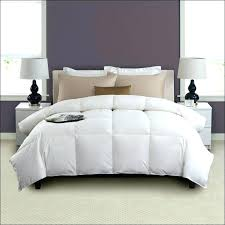 the seasons collection light warmth white goose down comforter lightweight down comforter king awesome charming light warmth queen