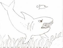 shark pictures color coloring free coloring pages