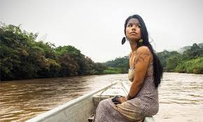 amazon black friday brazilian hair sale deep in the amazon a tiny tribe is beating big oil by david