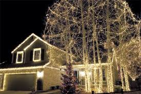 christmas lights in trees custom builders